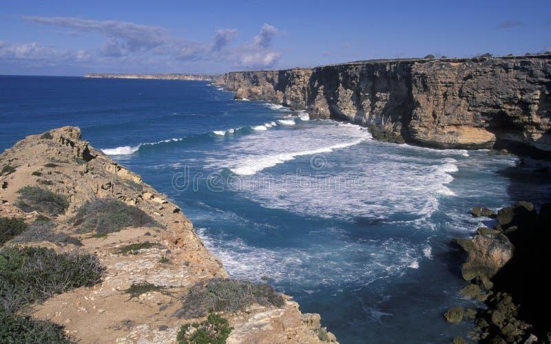 Falaises d'Australie du sud photographie stock libre de droits