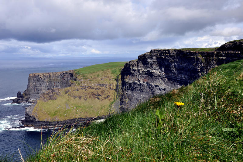 Falaises de Moher, Cie. Clare, Irlande image stock