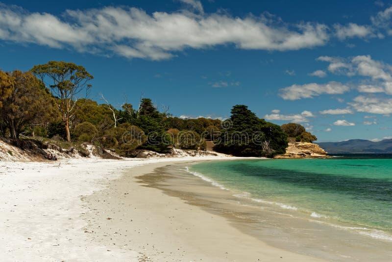 Falaises peintes, Maria Island, Tasmanie, réservation nationale, Australie image stock