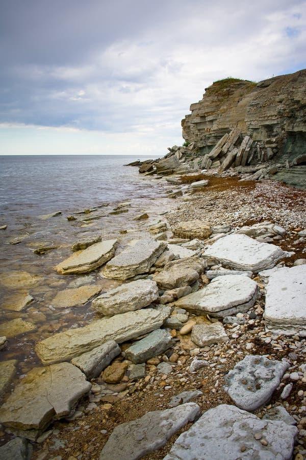 Falaises sur un rivage de mer baltique image libre de droits