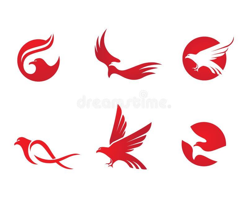 Falcão Logo Template ilustração royalty free