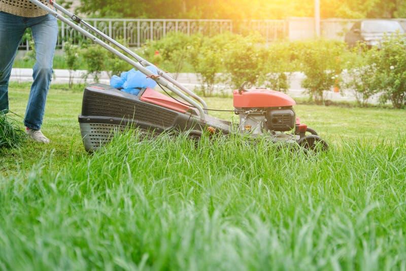 Falciatrice da giardino che taglia erba verde, giardiniere con funzionamento della falciatrice fotografie stock libere da diritti