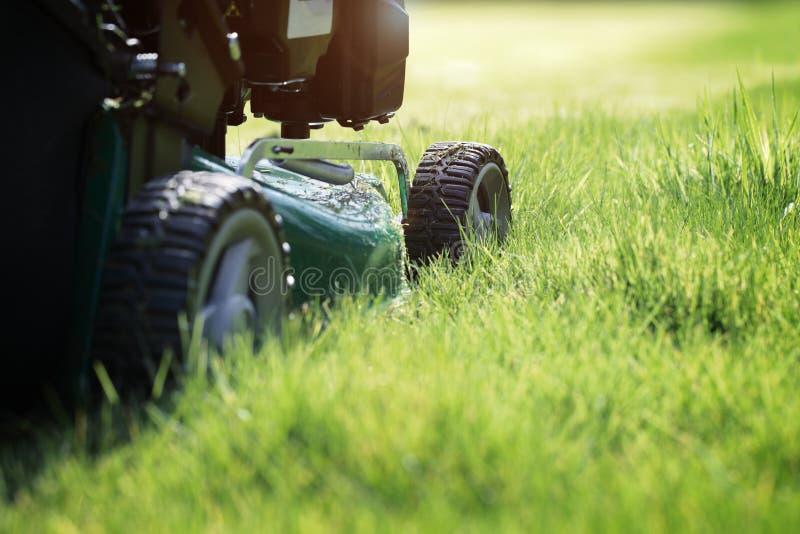 Falciatura dell'erba fotografia stock libera da diritti