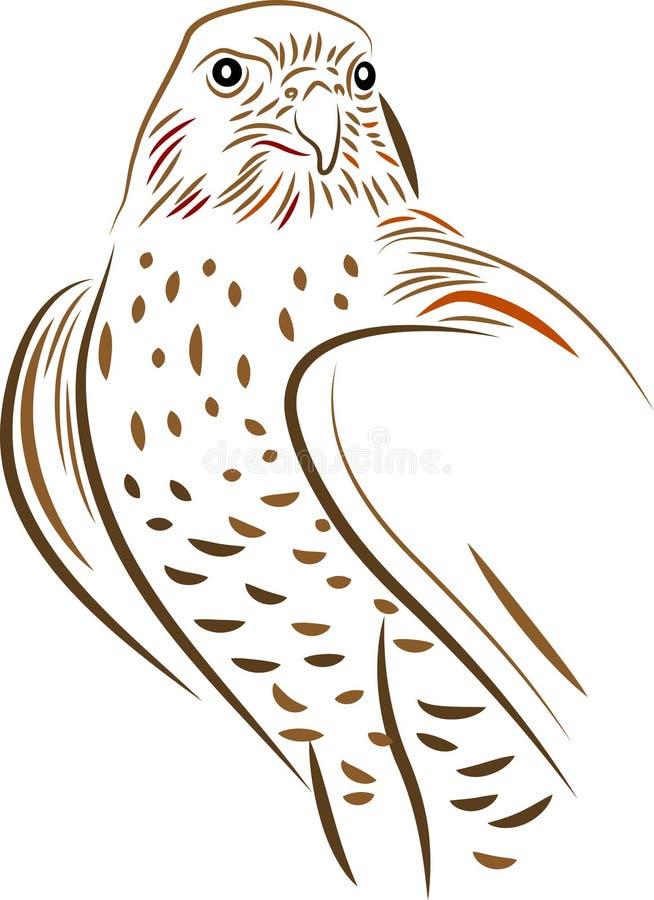 falco illustrazione di stock