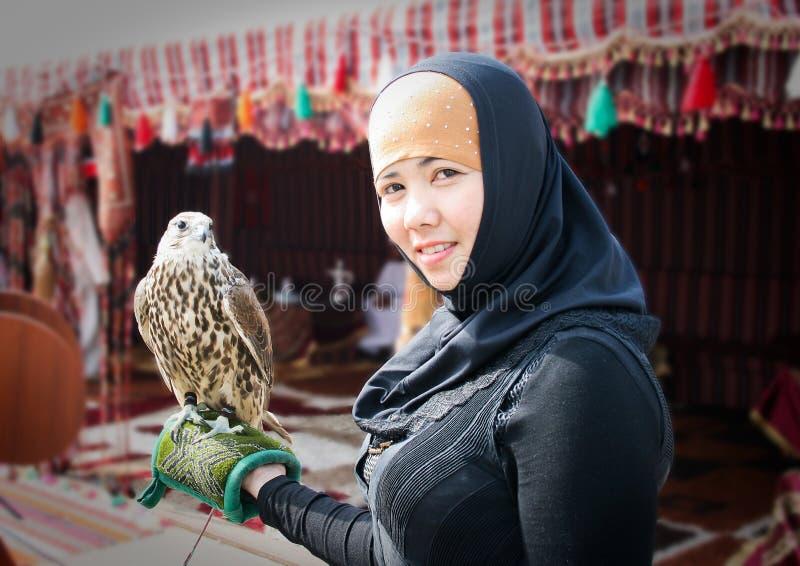 Falco arabo fotografia stock