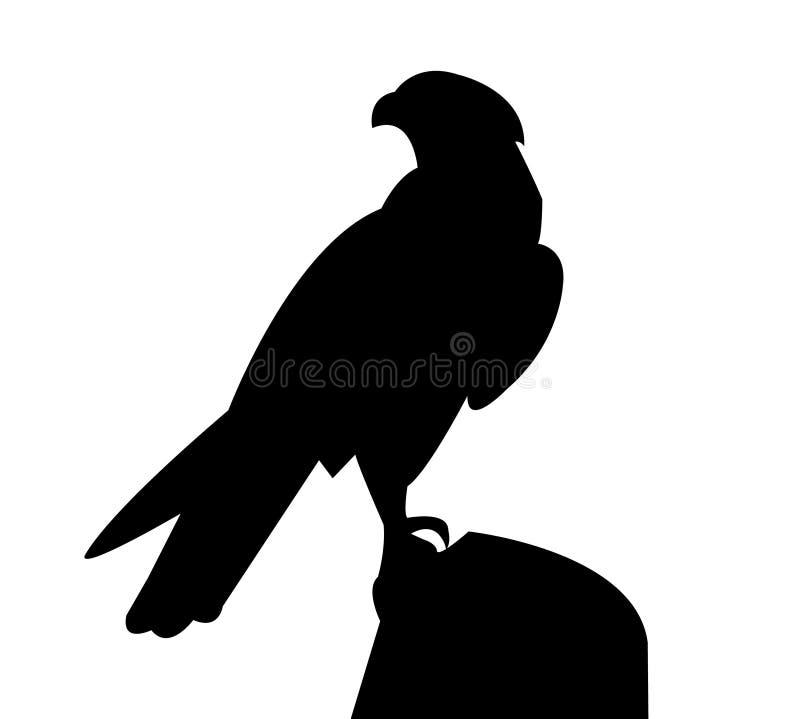 Falco che sta su una roccia illustrazione vettoriale