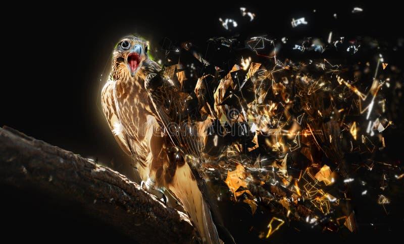 Falco con il becco aperto, concetto animale astratto royalty illustrazione gratis