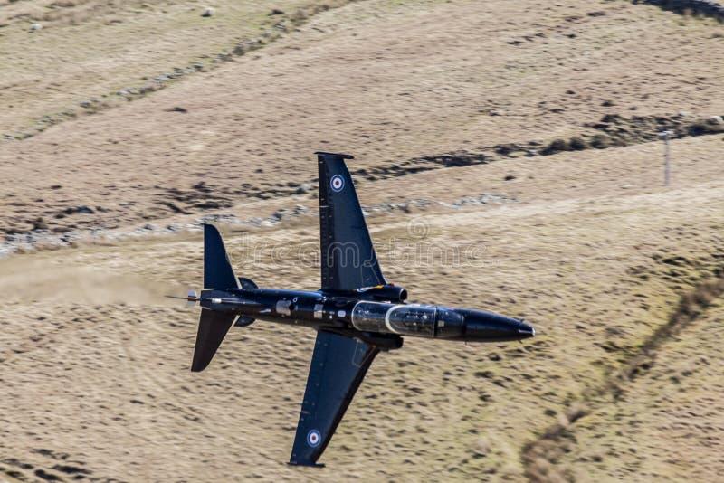 Falco del T2 fotografie stock