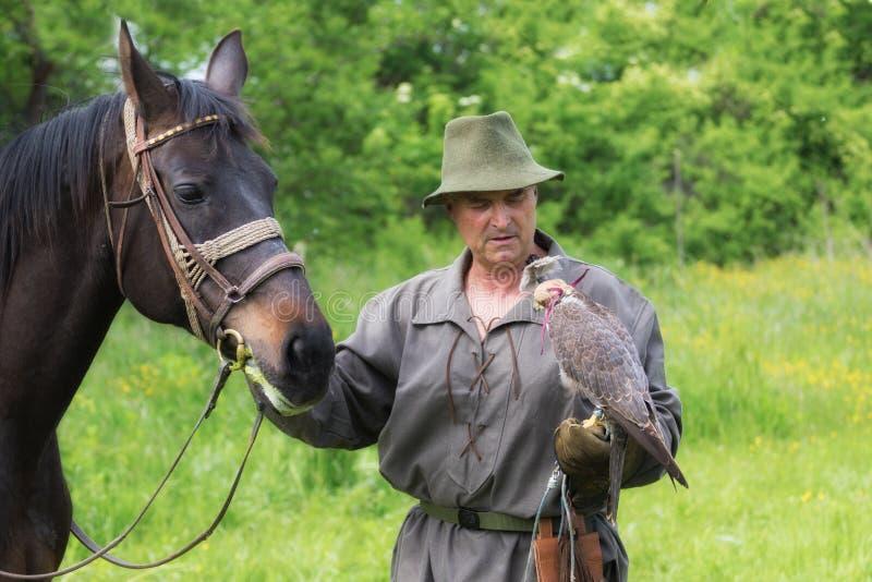 Falcoeiro na roupa tradicional com falcão e cavalo de peregrino imagens de stock royalty free
