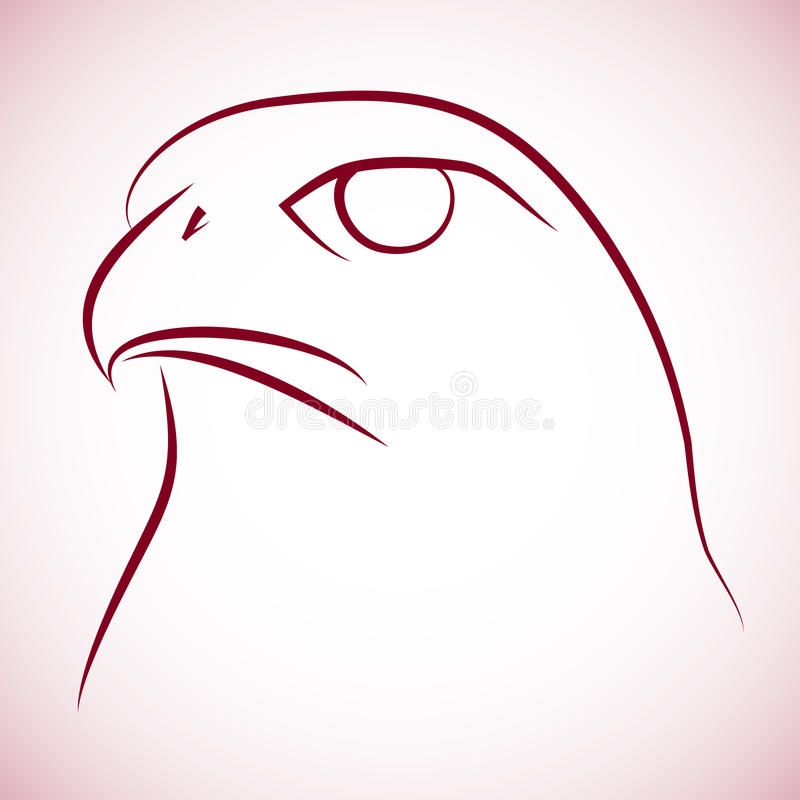 Download Falcone head stock vector. Image of eagle, animal, hawk - 23321646