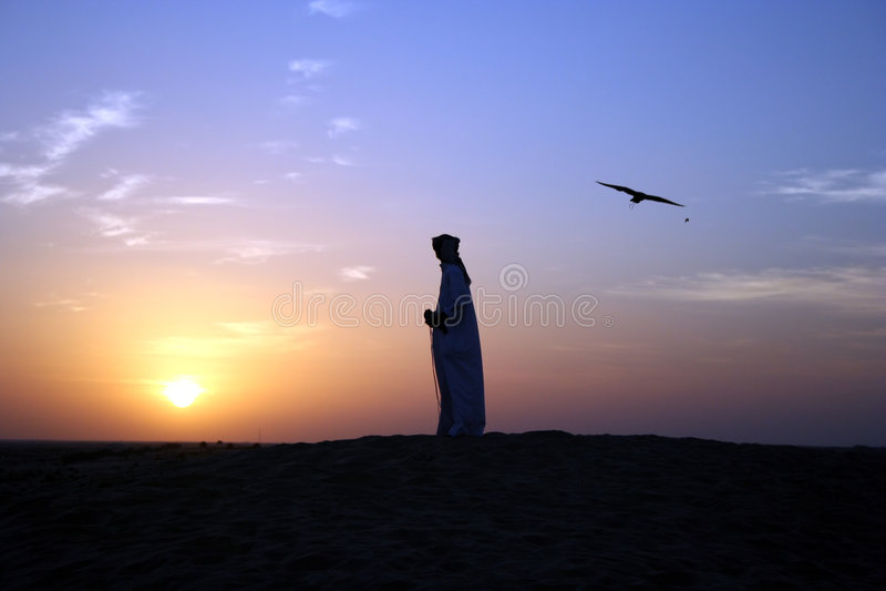 Falconer. An Arab Man with his Falcon in the Desert, Dubai, UAE