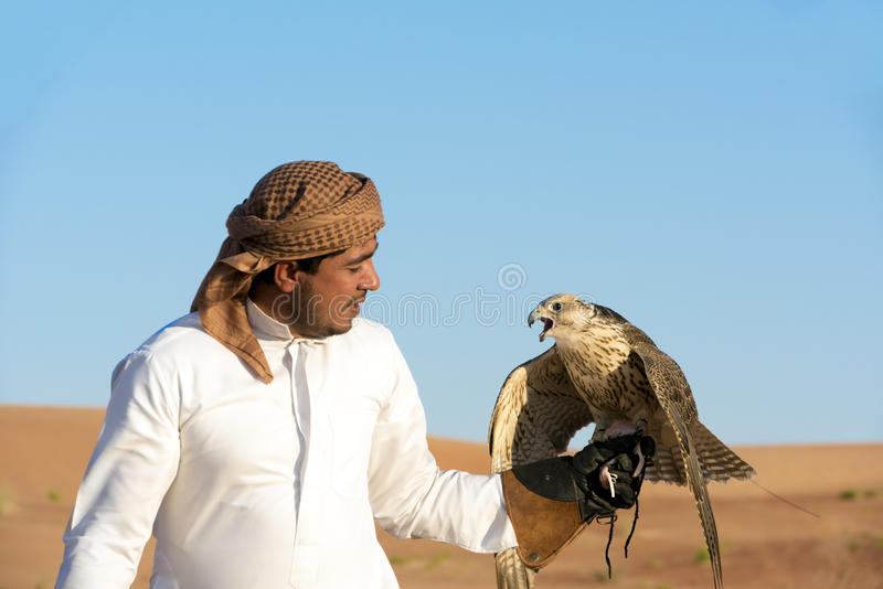 Falconer and falcon Abu Dhabi, UAE, United Arab Emirates. Falconer with falcon in desert of Abu Dhabi, man with bird of prey royalty free stock photography