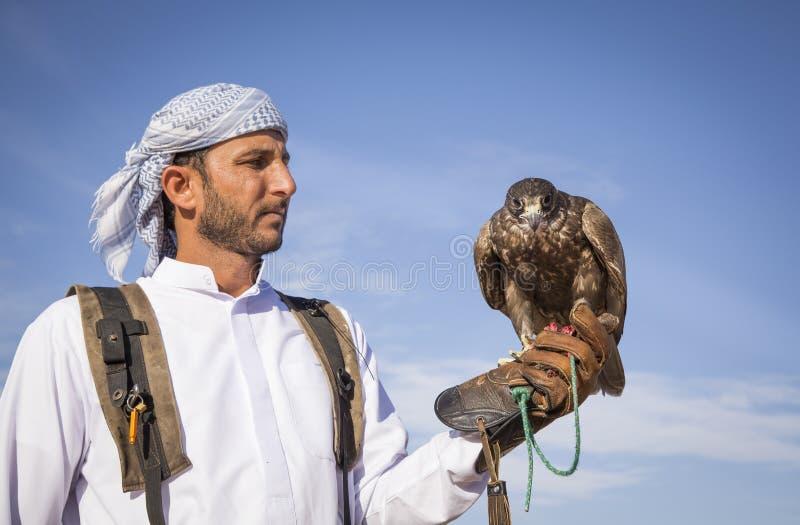 Falconer with a falcon in a desert near Dubai royalty free stock photo