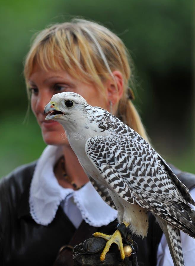 Falconiere femminile fotografia stock