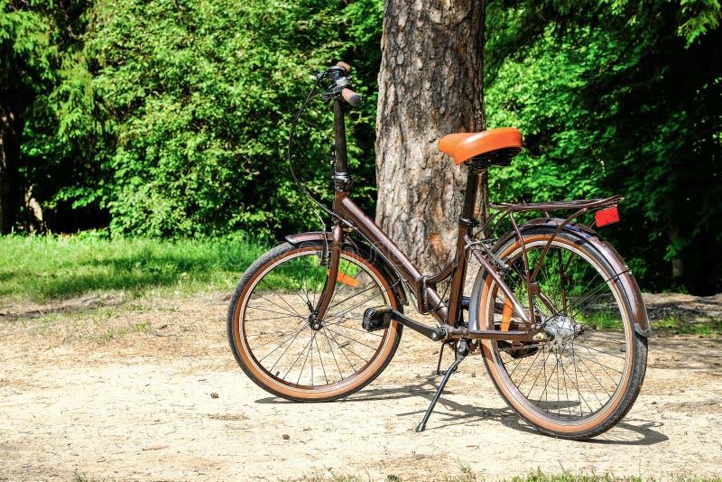 Falcowanie kobiet ` s chodzący rower fotografia stock