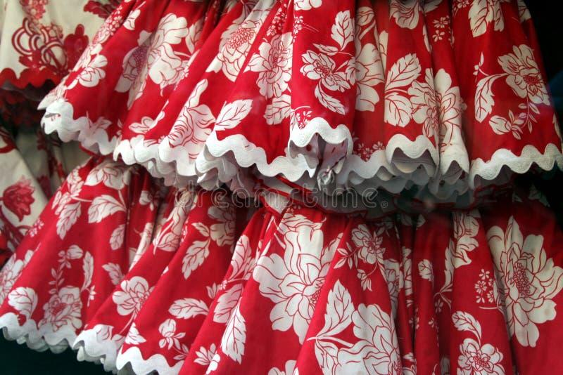 Falda del flamenco con las flores fotografía de archivo