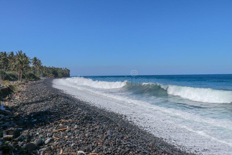 Fale atakują kamienistą plażę, i woda morska rozlewa nad plaży krawędzią Drzewka palmowe i tropikalna roślinność wykładają wybrze zdjęcia royalty free