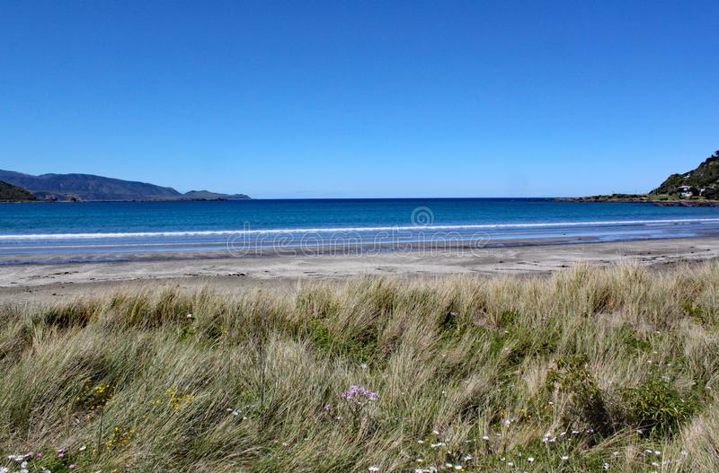 Fale delikatnie myje dalej plaża przy Lyall zatoką blisko Wellington, Nowa Zelandia zdjęcia stock