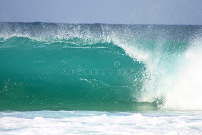 fale oceanu zdjęcia royalty free