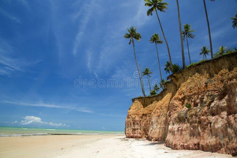 Falesias en Barra font la plage de Cahy, Bahia, Brésil Février 2017 image libre de droits