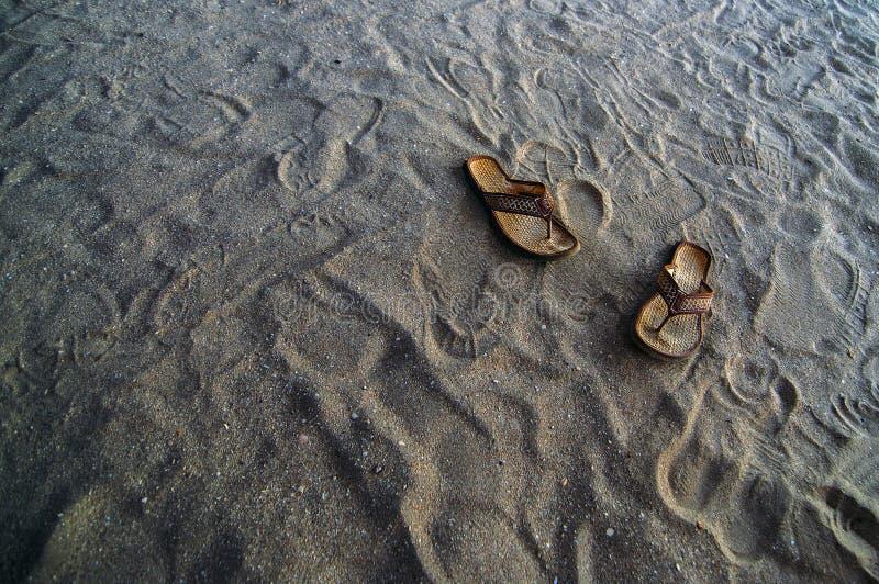 Download Falhanços Da Aleta Da Praia Foto de Stock - Imagem de costa, sandals: 26504002
