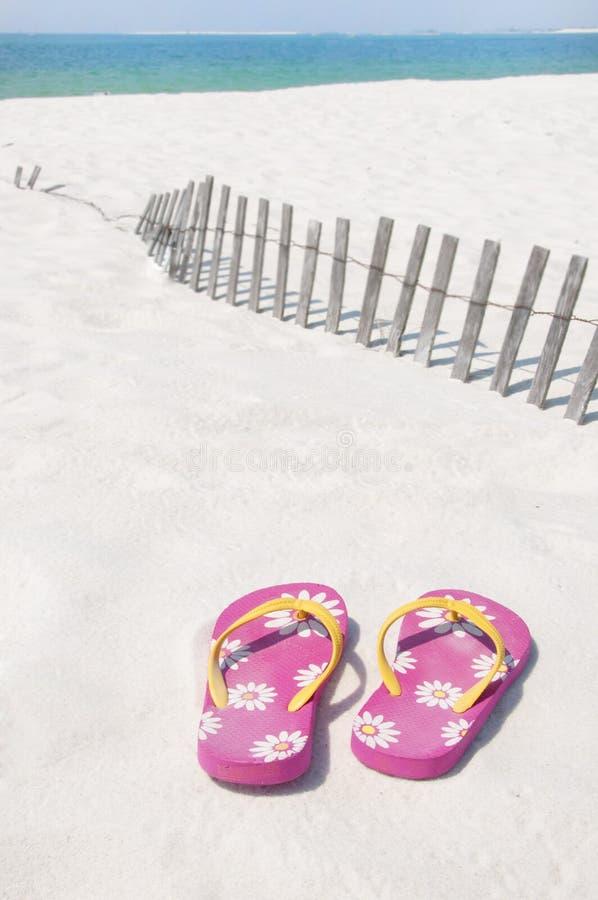 Falhanços da aleta na praia imagem de stock royalty free