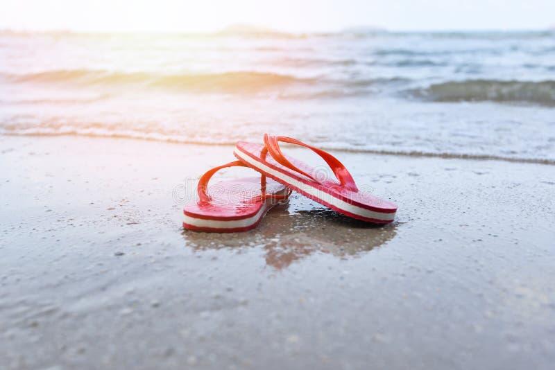 Falhanços de aleta vermelhos na praia com o oceano do mar do Sandy Beach e o fundo da luz solar imagens de stock