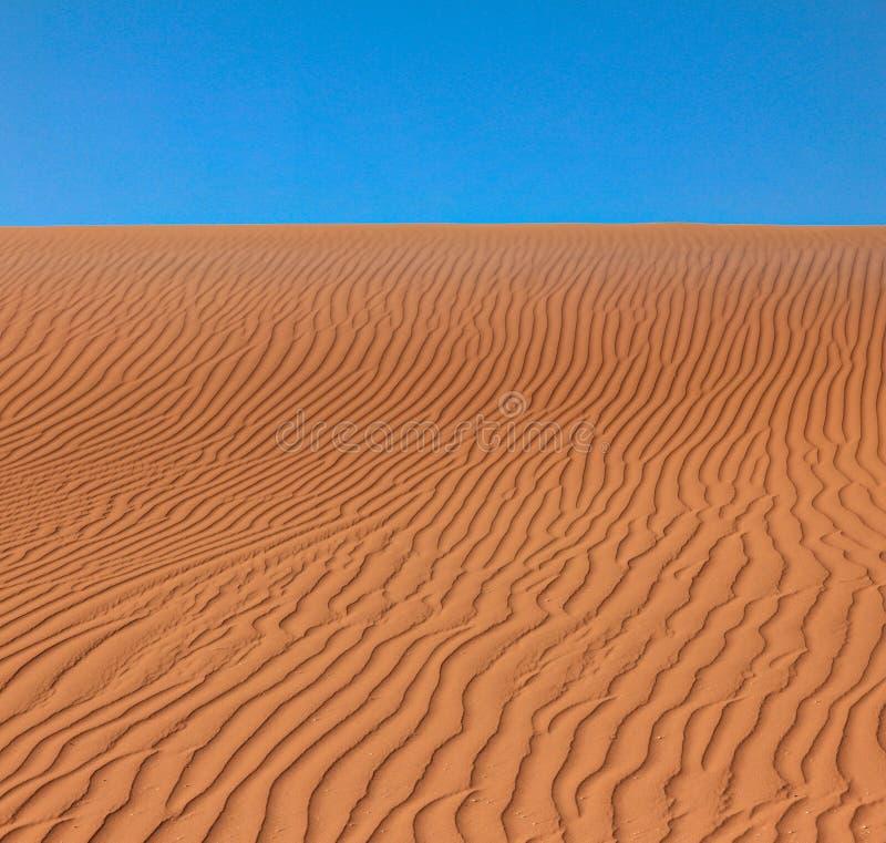 Falista pluskocząca pustyni, plaży piaska tekstura lub i fotografia royalty free