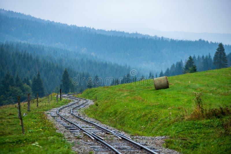 falistej beli kolejowi ślada w mokrym zielonym lesie z świeżymi łąkami zdjęcia royalty free