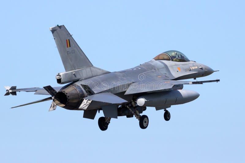 Falk för General Dynamics F16-stridighet royaltyfria bilder