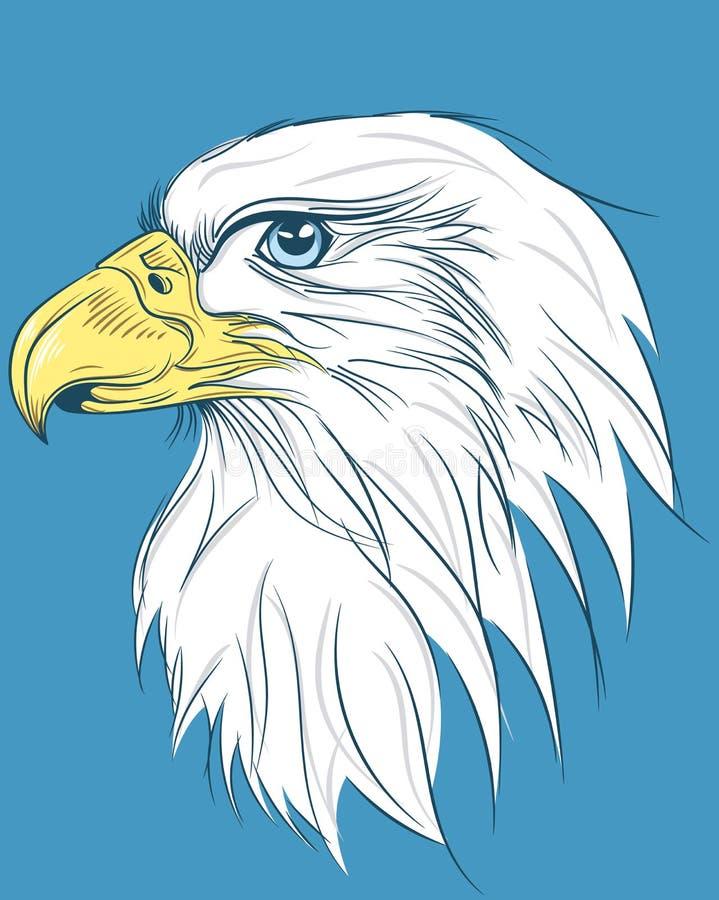 Falke-Kopf lizenzfreie abbildung