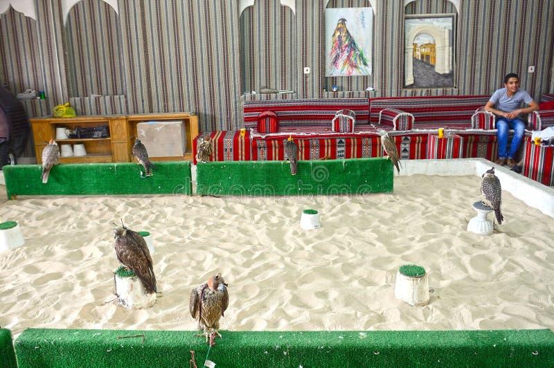 Falkenerarkonst Doha, Qatar arkivbilder