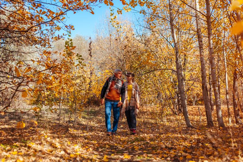 Fall activities. Senior couple walking in autumn park. Elderly man and woman hugging and chilling outdoors royalty free stock photo