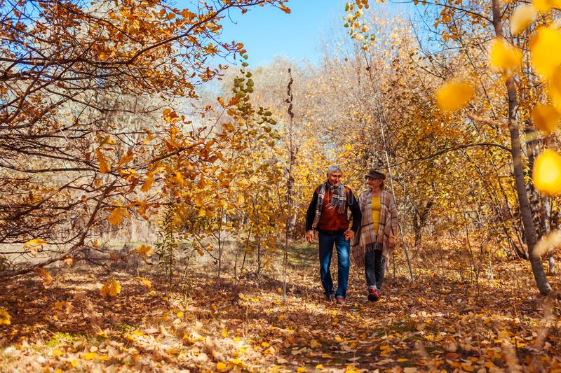 Fall activities. Senior couple walking in autumn park. Middle-aged man and woman hugging and chilling outdoors royalty free stock photos