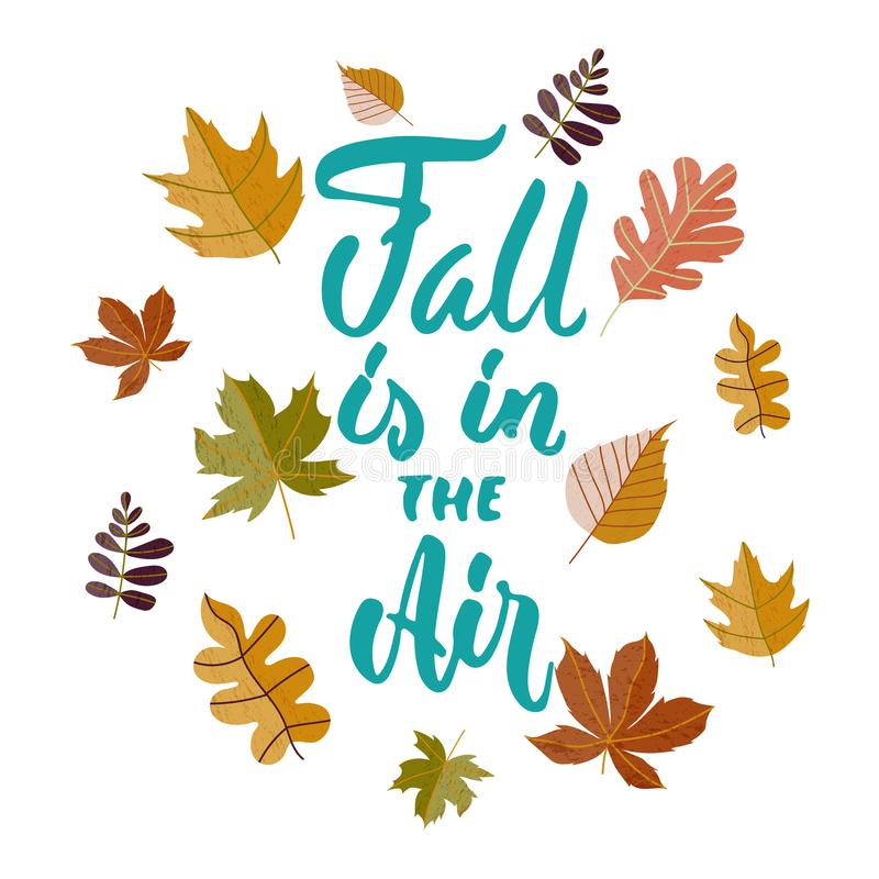 Fall is in the Air - hand drawn cozy Autumn seasons holiday lettering phrase and leaves doodles isolated on the white background. Fun brush ink vector stock illustration