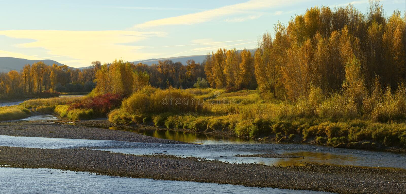 Fall Along the South Fork of the Snake River royalty free stock photography