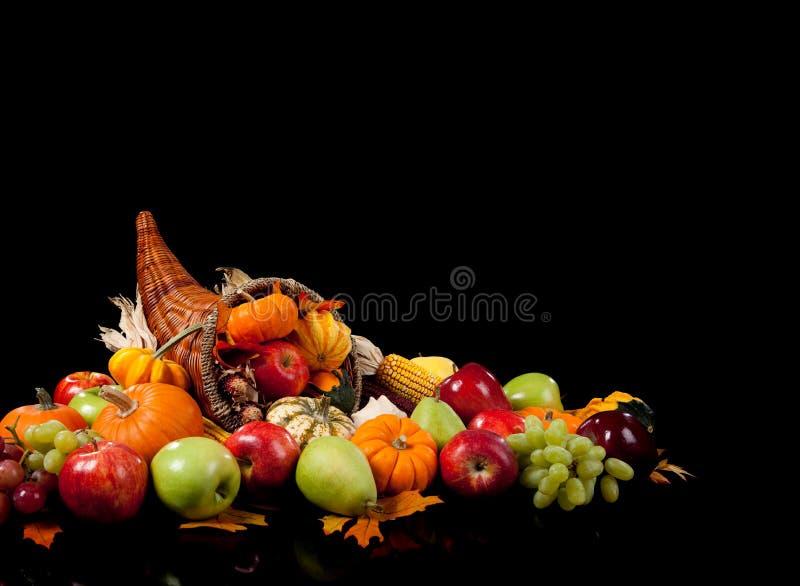 Fall arrangement of in a cornucopia royalty free stock photo