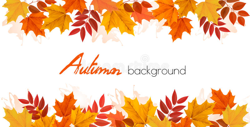 Fall Autumn Colorful Leaves Background. Vector vector illustration