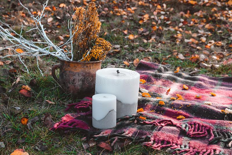 Fall autumn Halloween concept scenery with candles and dried plants in the pot. Fall autumn  concept scenery with candles and dried plants in the pot royalty free stock photo