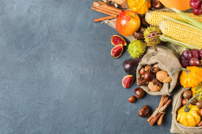 Fall autumn harvest thanksgiving background with pumpkin apple chestnut corn stock photography