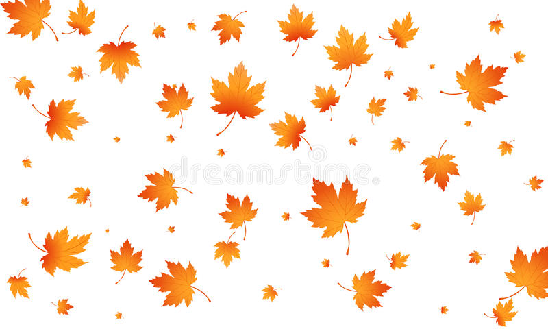 Fall autumn leaves background. Flying maple leaves . Vector autumn background.  stock illustration