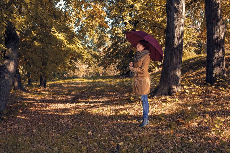 Fall. Autumn Park. Autumnal Trees and Leaves in sun rays. redhead girl with umbrella enjoying in nature royalty free stock photo