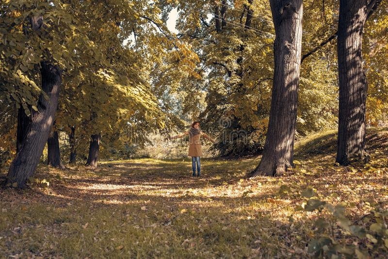 Fall. Autumn Park. Autumnal Trees and Leaves in sun rays. redhead woman have fun in the autumn forest royalty free stock photos