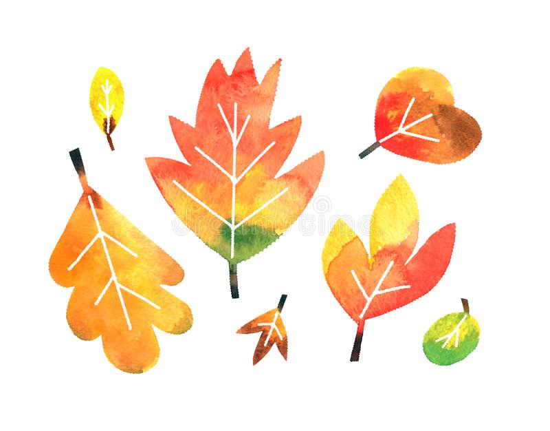 Fall watercolor leaves collection on white background with clipping mask. Fall autumn simple hand painted leaves collection set on white background with clipping vector illustration