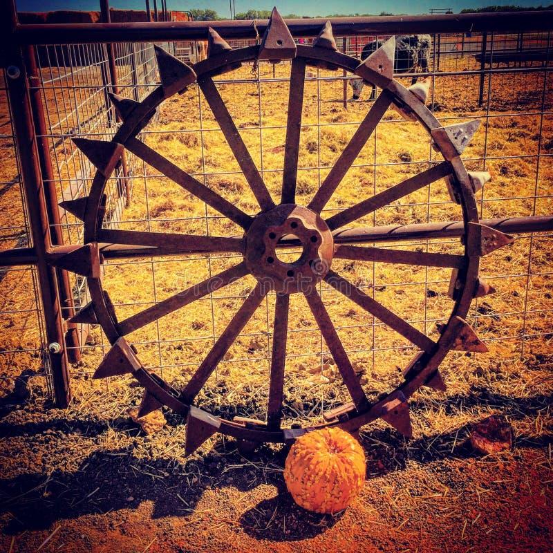 Fall autumn wagon wheel stock image