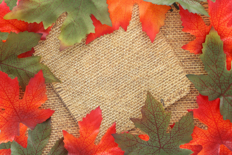 Download Fall background stock image. Image of frames, october - 6383519