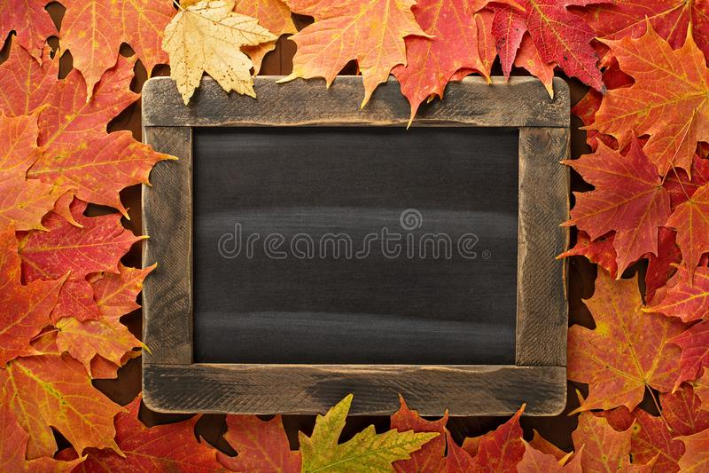 Fall background with a chalkboard royalty free stock images