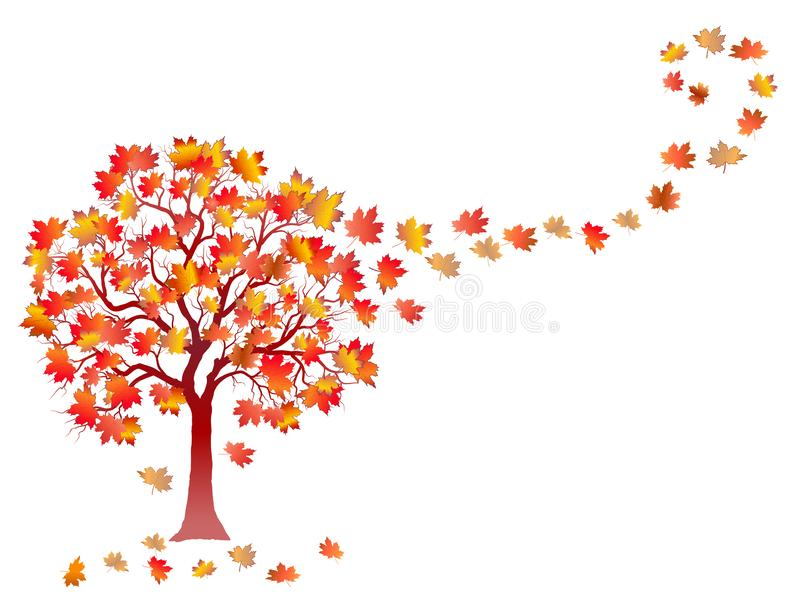 Fall background with colorful tree and falling leaves isolated on white background. stock illustration