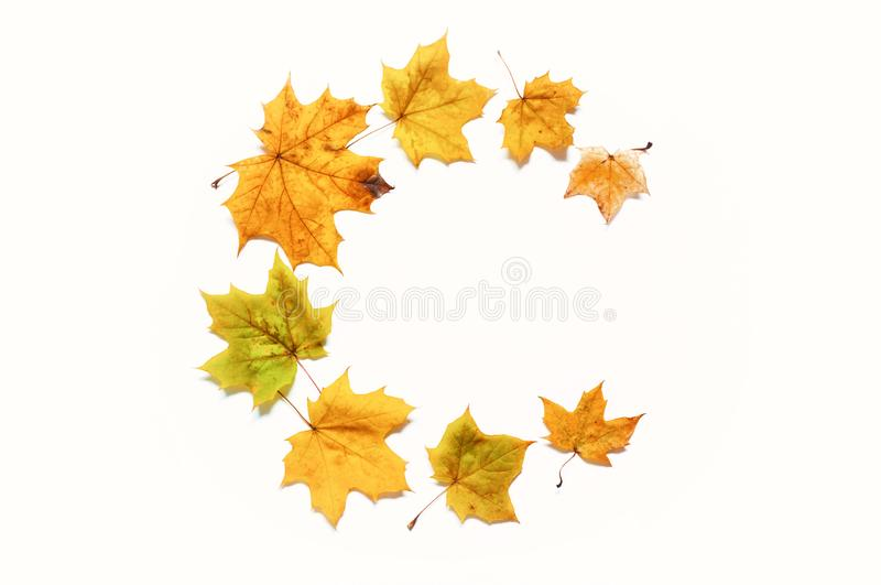 Fall background. Fall composition made of seasonal fall leaves on the white background with free space for text royalty free stock image
