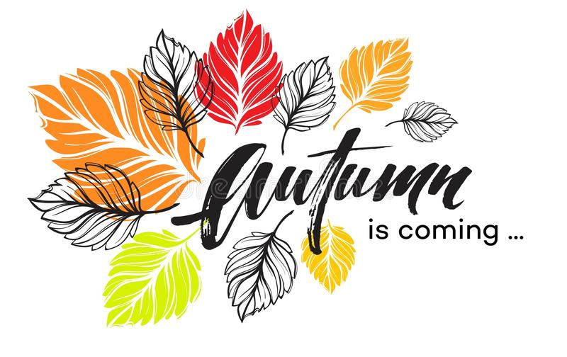 Fall background design with colorful autumn leaves. Vector illustration royalty free illustration